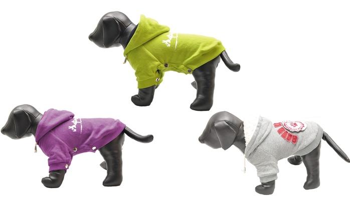 Veste en peluche pour chien, coloris et modèles au choix dès 12,98€