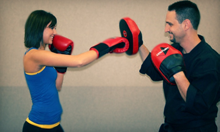 Illinois Martial Arts Academy - Falcon Greens: 5 or 10 Beginner or Level 2 Kickboxing Classes at Illinois Martial Arts Academy in Lakewood (Up to 59% Off)