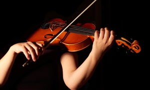 D Z Strad Violin Shop: Two Violin Lessons or $50 for $100 Worth of Instruments, Bows, or Cases at D Z Strad Violin Shop