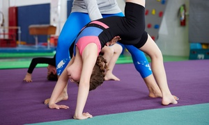 Kinetic Gymnastics Center: Kids' Shooting Stars or Hot Shot Classes at Kinetic Gymnastics Center (Up to 46% Off). Five Options Available.