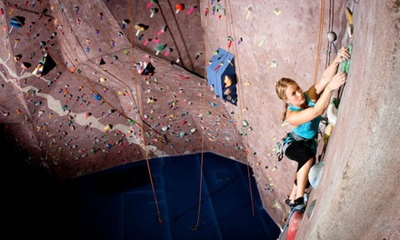 Rock-Climbing Day Pass for One or Two at The Edge Rock Gym (Up to 50% Off)