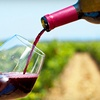 Up to 61% Off Winery Tour in Bluff Dale