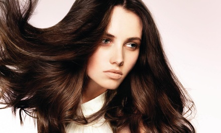 Haircut and Deep-Conditioner with Hand and Scalp Massage, or Blowout at Mode Organic Salon (Up to 51% Off)