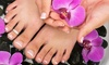 Platinum Xperience, LLC - willowbrook: Up to 52% Off Manicures and Pedicures at Platinum Xperience, LLC