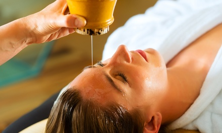 $62 for One Ayurvedic Holistic Health Consultation at David Gallaher's Gung Fu Institute ($125 Value)