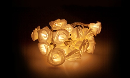 20 LED Roses for AED 59 (61% Off)