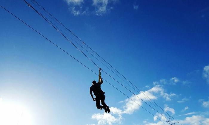 Zipline Junky - Zipline Junky: One, Two, Four, or Eight Zipline Rides at Zipline Junky (Up to 56% Off)