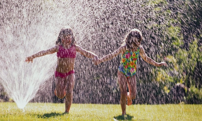 Mosquito Joe - Orlando: Mosquito-Control Treatment for a Half or Full Acre from Mosquito Joe (Up to 52% Off)