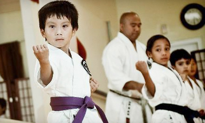 Shotokai-USA - Clearview: $29 for One Month of Unlimited Martial-Arts Classes with Uniform at Shotokai-USA in Bayside ($185 Value)