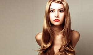 Ani at Ala Mode Hair Studio: Women's or Men's Haircut Packages from Ani at Ala Mode Hair Studio (Up to 69% Off). Three Options Available.