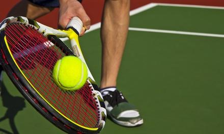 Tenis lub badminton