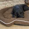 Luxury Bolster Round Pet Bed