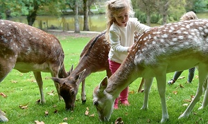 The Bird And Deer Park: Child or Adult Entry to The Bird and Deer Park (50% Off)