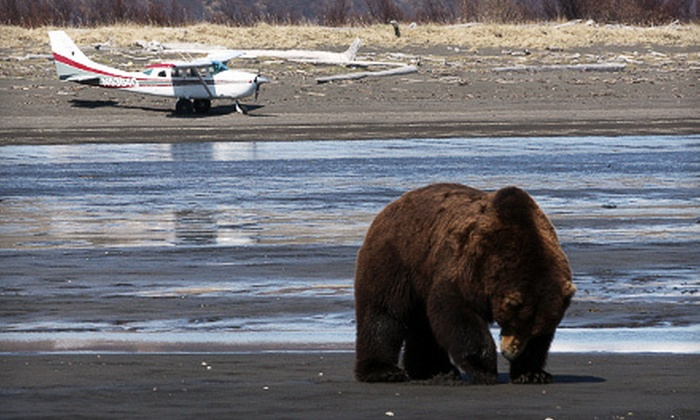 Alaska Bear Adventures - Homer: Bear Viewing and Aerial Sightseeing for One or Up to Five from Alaska Bear Adventures in Homer (Up to 55% Off)