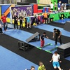 49% Off Intro to Parkour Classes