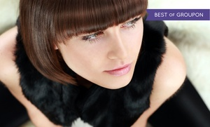 Salon 209: Haircut, Shampoo, and Style with Options for Full Highlights or Hair-Smoothing Treatment (Up to 61% Off)