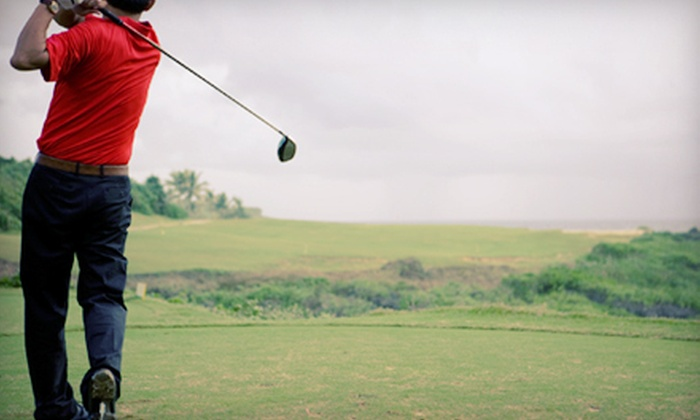Robert Jan Golf - Multiple Locations: One or Three Private, One-Hour Golf Lessons from Robert Jan Golf (Up to 74% Off)
