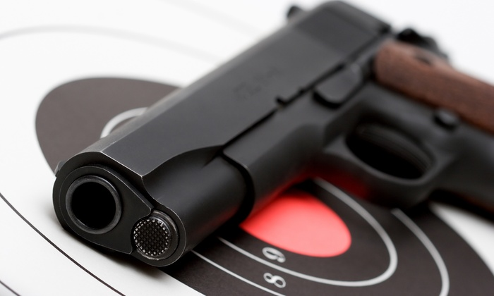 Florida Firearms Institute - Doral: $176 for $320 Worht of Services at Florida Firearms Institute