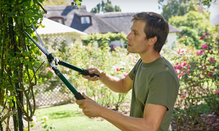 Korita's Landscaping Maintenance - Salem OR: $69 for Three Man-Hours of Landscaping, Plant Pruning, or Cleanup from Korita's Landscaping Maintenance ($200 Value)