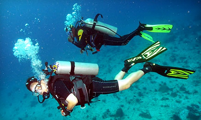 Blue Sea Adventures - Multiple Locations: Open Water Diver Certification Course or Scuba Class for One or Two from Blue Sea Adventures. Two Locations Available. (Up to 62% Off)