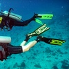 Up To 62% Off Diver Certification or Scuba Class