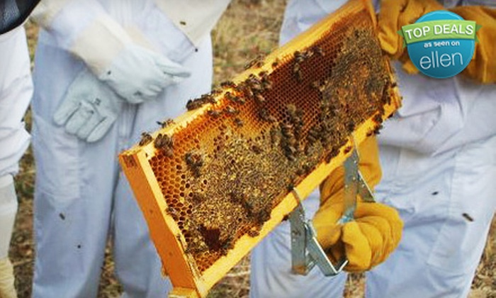 Round Rock Honey - Redwood City: Introductory Beekeeping Class for One or Two at Round Rock Honey in Redwood City (Up to 68% Off)