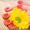 Casablanca Nails - Studio City: Shellac Gel-Polish Manicure ($39 Value)