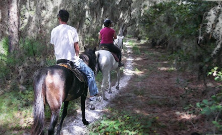 1 Day or Night Horseback Trail Ride for Two People (a $70 value)  - Red Fox Stables in Lithia