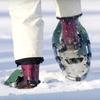Half Off Snowshoe Rental and Lesson for Two