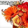 Half Off Flowers from Pierson's