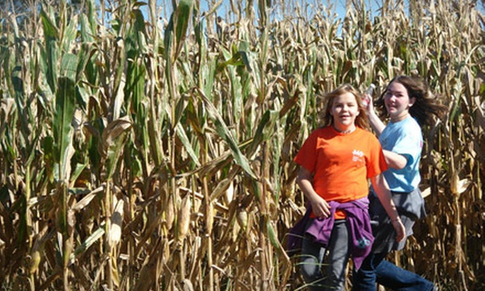 Our Family Farm's Memphis Corn Maze - Southwind: Corn Maze Outing for Family or Four at Our Family Farm's Memphis Corn Maze in Olive Branch