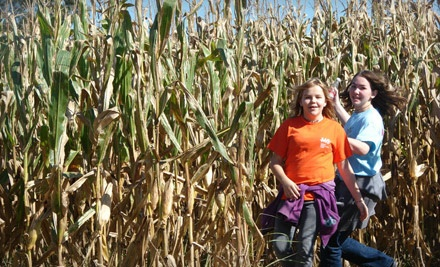 Two Adult (13+) and Two Child Passes to the Maze (a $28 value) - Our Family Farm's Memphis Corn Maze in Olive Branch