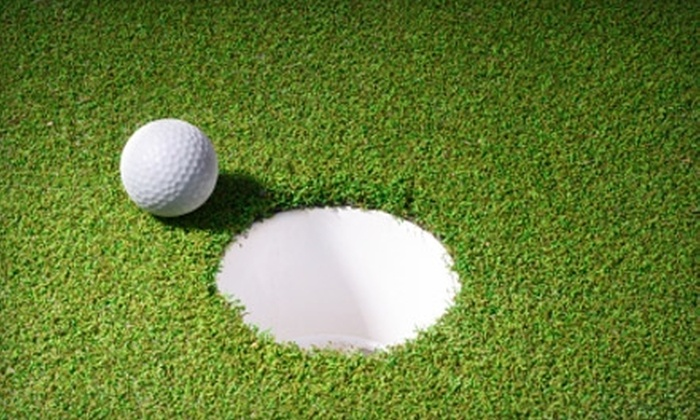 Precision Driven - Oak Brook: $25 for a One-Hour Private Golf Lesson with Greg Baresel at AthletiCo Golf Performance Center in Oak Brook ($90 Value)