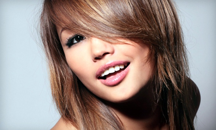 Artistic Fusion Hair Company - Three Chopt: $75 for Haircut and Blow Dry, Partial Highlights or All-Over Color, Deep Conditioning, and Take-Home Mini-Flat Iron Styler at Artistic Fusion Hair Company (Up to $184.95 Value)