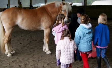 Equine Life Solutions: 1-Hour Initial Horseback-Riding Orientation and Evaluation for Adults and Kids 3+ - Equine Life Solutions in Bothell