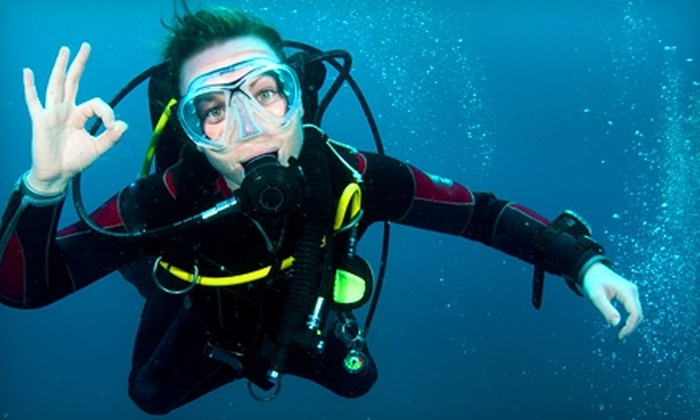 Wilson Diving - Victoria: $28 for a Three-Hour Discover Scuba Class at Wilson Diving ($60 Value)
