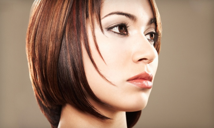 Extasis Salon & Spa - North Royalton: $50 for Color Services, Haircut, and Blow Dry Styling in North Royalton (Up to $100 Value)