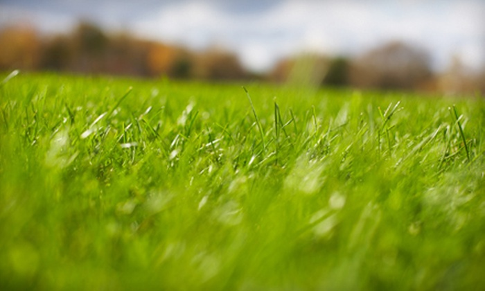 Terra Nova Landscape and Irrigation - Eugene: Lawn Aeration, Fertilization, or Aeration and Fertilization from Terra Nova Landscape and Irrigation (Up to 68% Off). Choose from Four Options.