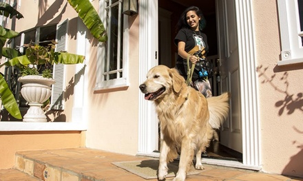 Two or Four Private Dog Walks from Wag the On Demand Dog Walking App (50% Off)