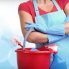 52% Off Housecleaning from Dusting Housewives
