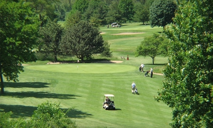 Downers Grove Golf Club - Downers Grove: $22 for a 30-Minute Private Adult Golf Lesson at Downers Grove Golf Club ($45 Value)
