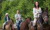 Forest View Farms - Tinley Park: One-Hour Private Horseback Trail Ride for Two, Four, or Six at Forest View Farms in Tinley Park (Up to 56% Off)