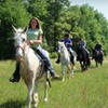 54% Off Weekend Ranch Stay for Four in Hephzibah