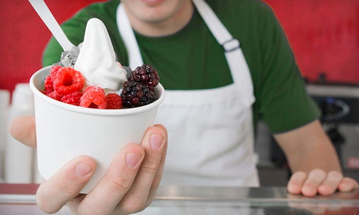 Fabulous Freddy's - San Mateo Valley: $10 for 60 Oz. of Frozen Yogurt at Fabulous Freddy's ($21.60 Value)