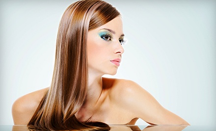 Haircut, Conditioning, and Style with Option for Partial Highlights or Color at Delight Hair Salon (Up to 55% Off)