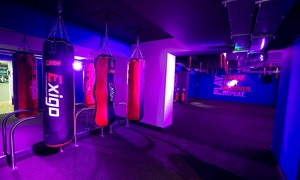 Boxercise Bootcamp: Five or 10 One-Hour Indoor Bootcamp Classes at Boxercise Bootcamp (Up to 80% Off)