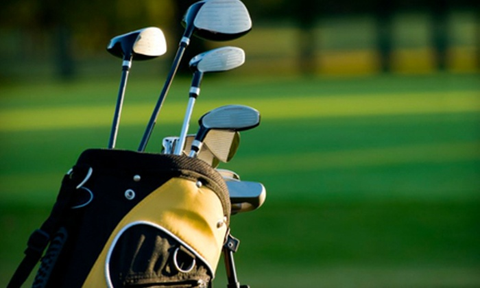 Golfer on the Go - Markham: On-Course Golf Instruction for One, Two, or Four from Golfer on the Go at Markham Green Golf Club (Up to 66% Off)