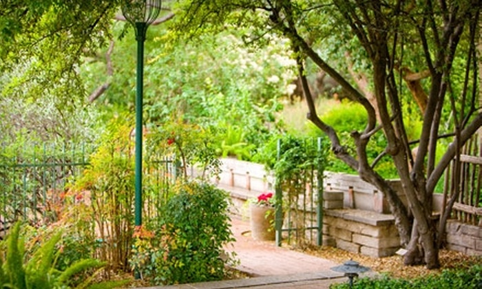 Tucson Botanical Gardens: $30 for a One-Year Family Membership at Tucson Botanical Gardens ($60 Value)