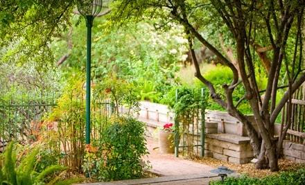 Tucson Botanical Gardens - Tucson Botanical Gardens in