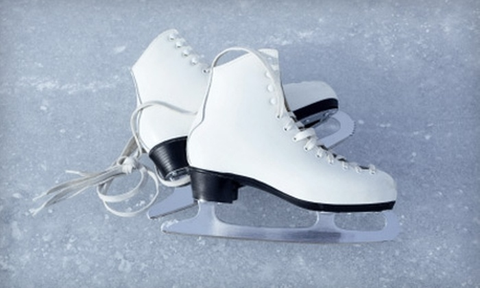 Steeplechase Ice Skating - Coney Island: $20 for a Semiprivate Skating Lesson from Steeplechase Ice Skating at the Abe Stark Rink in Brooklyn ($40 Value)